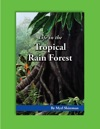 Life In The Tropical Rain Forest