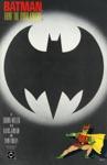Batman The Dark Knight Returns 3