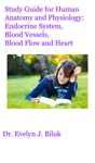 Study Guide For Human Anatomy And Physiology Endocrine System Blood Vessels Blood Flow And Heart