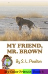 My Friend Mr Brown A Preschool Early Learning Colors Picture Book