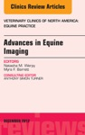 Advances In Equine Imaging