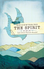 NIV, ENCOUNTERING THE SPIRIT BIBLE, EBOOK
