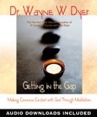 Wayne W. Dyer - Getting in the Gap  artwork