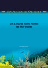 Underwater Odyssey Sick  Injured Marine Animals Tell Their Stories