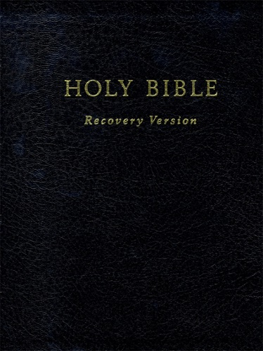 Text Only Holy Bible Recovery Version