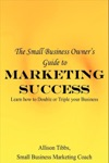 Small Business Owners Guide To Marketing Success