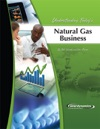 Understanding Todays Natural Gas Business