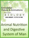 Animal Nutrition And Digestive System Of Man
