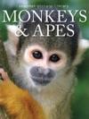 Monkeys  Apes