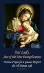 Our Lady Star Of The New Evangelization