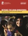 Beyond The Arab Awakening