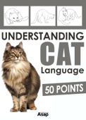 Understanding Cat Language - 50 Points