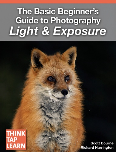 The Basic Beginner's Guide to Photography Light & Exposure