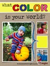 What Color Is Your World