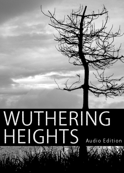 an examination of emily brontes wuthering heights Like all classics, wuthering heights throws up new meanings each time one reads it rereading it, i was struck by how illness, most of it mortal, runs through the book.