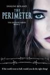 The Perimeter Outside Series 3