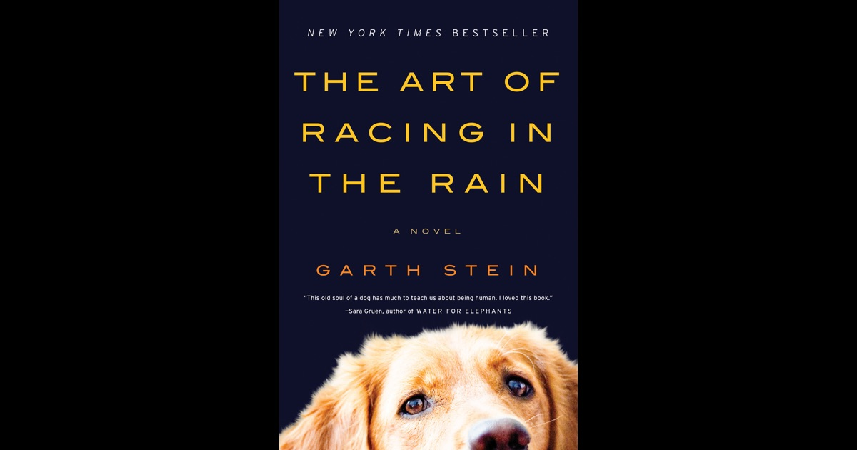 the art of racing in the rain by garth stein essay You are here: home / works / the art of racing in the rain  stay cool for your  summer book club discussion with a literary visit to the puget sound's shady.