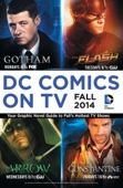 Various Authors - DC Comics on TV: Fall 2014 Graphic Novel Primer  artwork