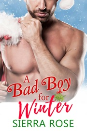 A Bad Boy for Winter book summary