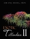 Exotic Tillandsia Ii
