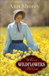 Where Wildflowers Bloom Sisters At Heart Book 1