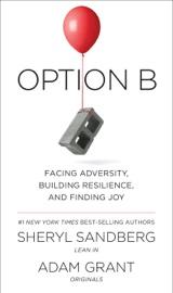 Option B book summary