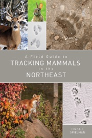 A FIELD GUIDE TO TRACKING MAMMALS IN THE NORTHEAST