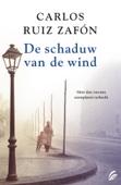 Carlos Ruiz Zafón - De schaduw van de wind kunstwerk