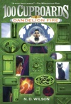 Dandelion Fire 100 Cupboards Book 2
