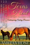 Texas Heat Box Set Books 1-3