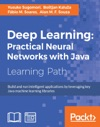 Deep Learning Practical Neural Networks With Java