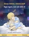 Slaap Lekker Kleine Wolf - Ngu Ngon Con Soi Nho I Tweetalig Kinderboek Nederlands - Vietnamees