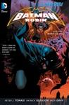 Batman And Robin Vol 1 Born To Kill