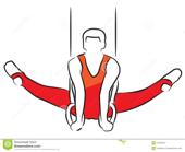 The National League of Gymnastics