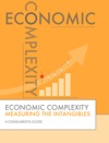 Economic Complexity Measuring The Intangibles