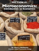Similar eBook: Microeconomics: Introduction to Economics