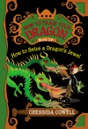 How To Train Your Dragon How To Seize A Dragons Jewel