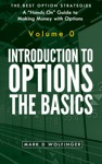Introduction To Options The Basics