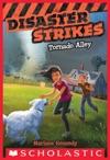 Disaster Strikes 2 Tornado Alley