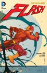 The Flash 2011-  27