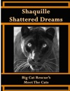 Shaquille Shattered Dreams
