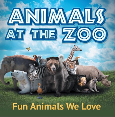Animals at the Zoo Fun Animals We Love