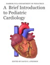 A  Brief Introduction To Pediatric Cardiology