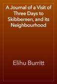 Elihu Burritt - A Journal of a Visit of Three Days to Skibbereen, and its Neighbourhood artwork