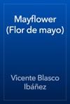 Mayflower Flor De Mayo