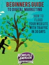 Beginners Guide To Digital Marketing How To Flood Your Website With Traffic In 30 Days