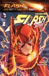 The Flash Special Edition 2014-  1