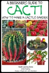 A Beginners Guide To Cacti How To Make A Cactus Garden