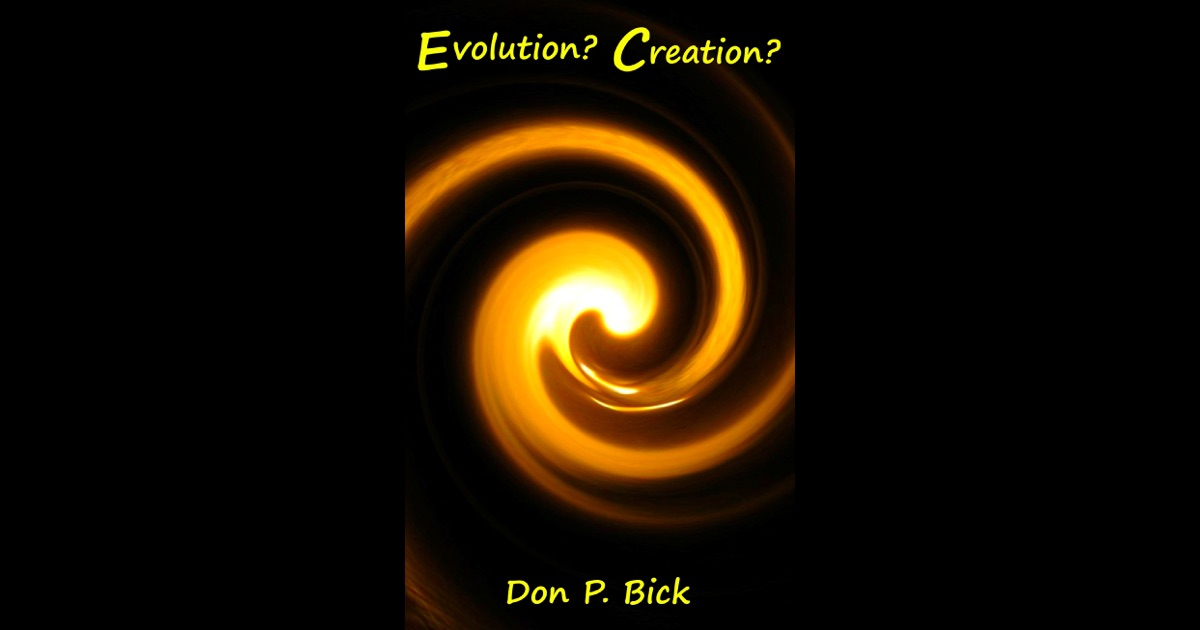 Evolution or Creation? Essay?