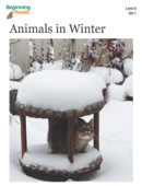 Animals in Winter